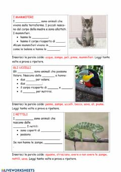 Interactive worksheet Animali 1
