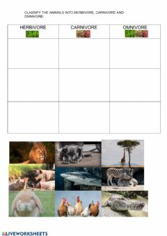 Interactive worksheet Omnivore, herbivore and carnivore animals