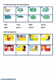 Interactive worksheet Country vocabulary and adjectives