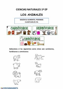 Interactive worksheet Clasificacion de los animales