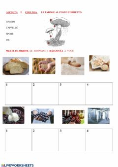 Interactive worksheet FUNGHI 2