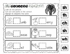 Interactive worksheet The Digraph Expedition