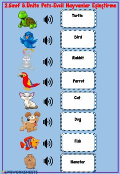 Interactive worksheet Pets Listen and Write 2