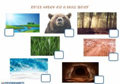 Interactive worksheet We're going on a bear hunt