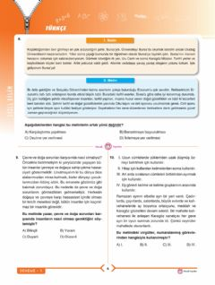 Interactive worksheet Lgs mi̇ni̇ 2