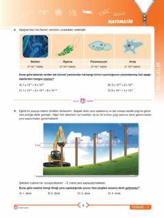 Interactive worksheet Lgs mi̇ni̇ 8