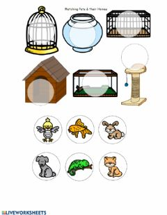 Interactive worksheet Match the pets to their homes