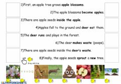 Interactive worksheet How Animals Help Plants Reproduce