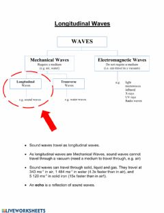 Ficha interactiva Waves 4: Longitudinal Waves