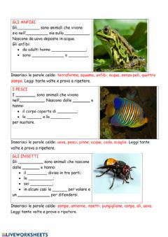 Interactive worksheet Animali 2