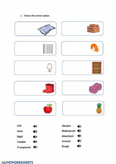 Interactive worksheet Properties of materials