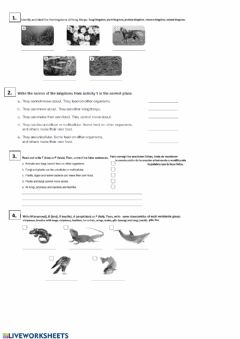 Ficha interactiva Vertebrates and invertebrates