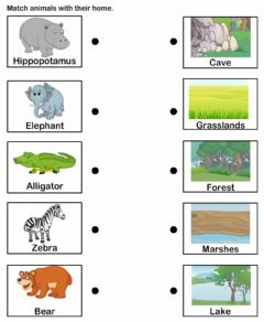 Interactive worksheet Animal habtat