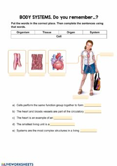 Interactive worksheet Cell organisation