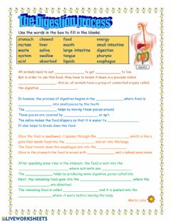 Interactive worksheet Digestion Process