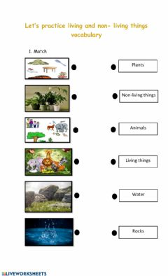 Interactive worksheet Let's practice - Living and non living things