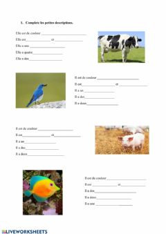 Interactive worksheet Description animaux