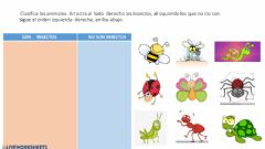 Interactive worksheet Insectos