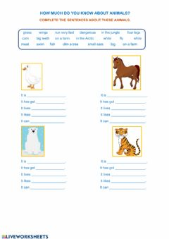 Interactive worksheet How much do you know about animals?