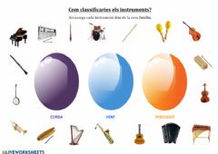 Interactive worksheet Famílies d'instruments