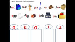 Interactive worksheet Vowel practice worksheet