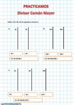 Interactive worksheet Dcm