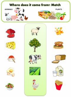 Interactive worksheet Where the food comes from