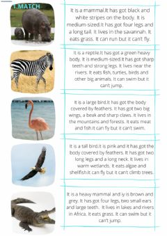 Ficha interactiva ANIMALS' DESCRIPTIONS 4TH