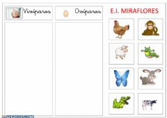 Interactive worksheet Reproducción de los animales