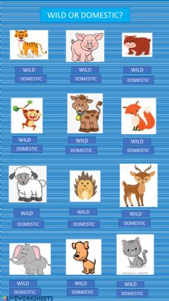 Interactive worksheet Wild or domestic