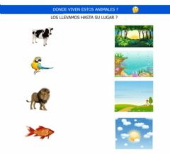 Interactive worksheet Animales y habitat