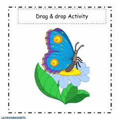 Interactive worksheet Mrs.Mary