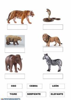 Interactive worksheet Animales salvajes