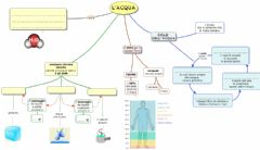 Interactive worksheet L'Acqua