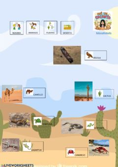Interactive worksheet Vocabulario desierto