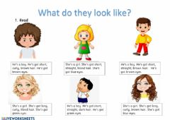 Interactive worksheet What do they look like?