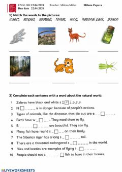 Interactive worksheet Kid's Box 5 Unit 7 Natural world