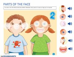 Ficha interactiva Parts of the Face