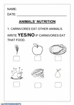 Interactive worksheet Animals nutrition