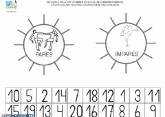 Interactive worksheet Par e impar TEA