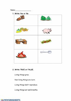 Interactive worksheet Living or non living
