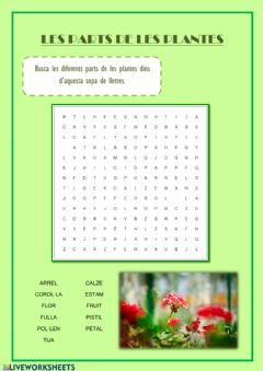 Interactive worksheet Sopa de lletres parts de les plantes
