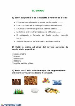 Interactive worksheet Il suolo