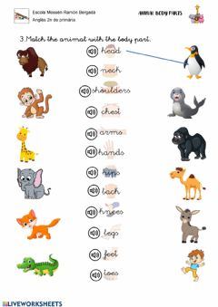 Interactive worksheet From head to toes activities 2