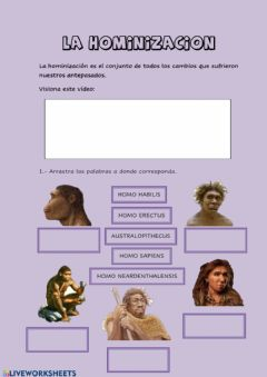 Interactive worksheet La hominización