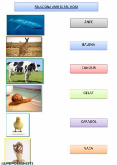 Interactive worksheet Vocabulari valencià 1º primaria