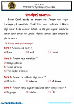 Interactive worksheet Metin Anlama-2