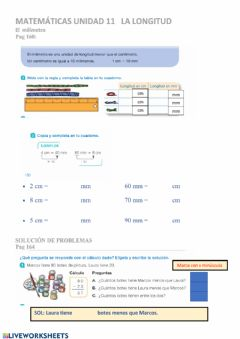 Interactive worksheet El milímetro