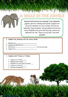 Interactive worksheet A Walk in the Jungle