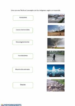 Interactive worksheet Cambio climático